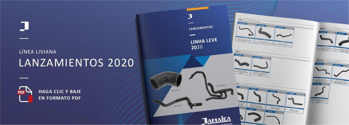 site lancamento2020 SPAÑOL